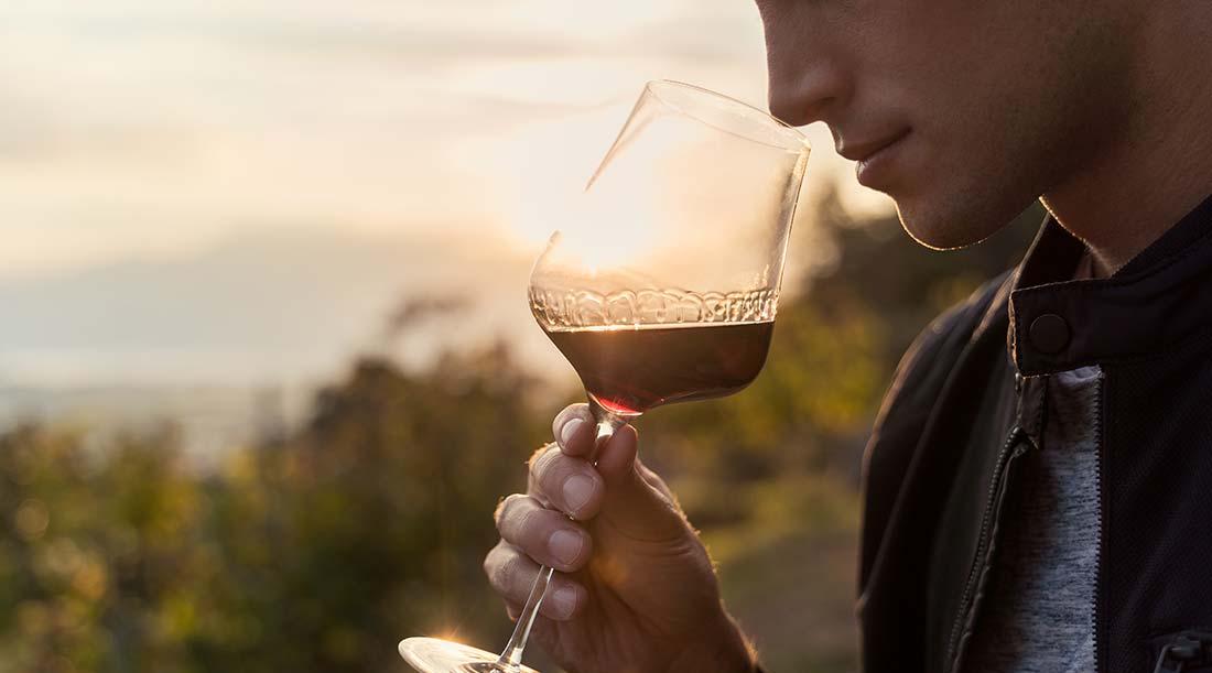 Beber copo vinho Tinto