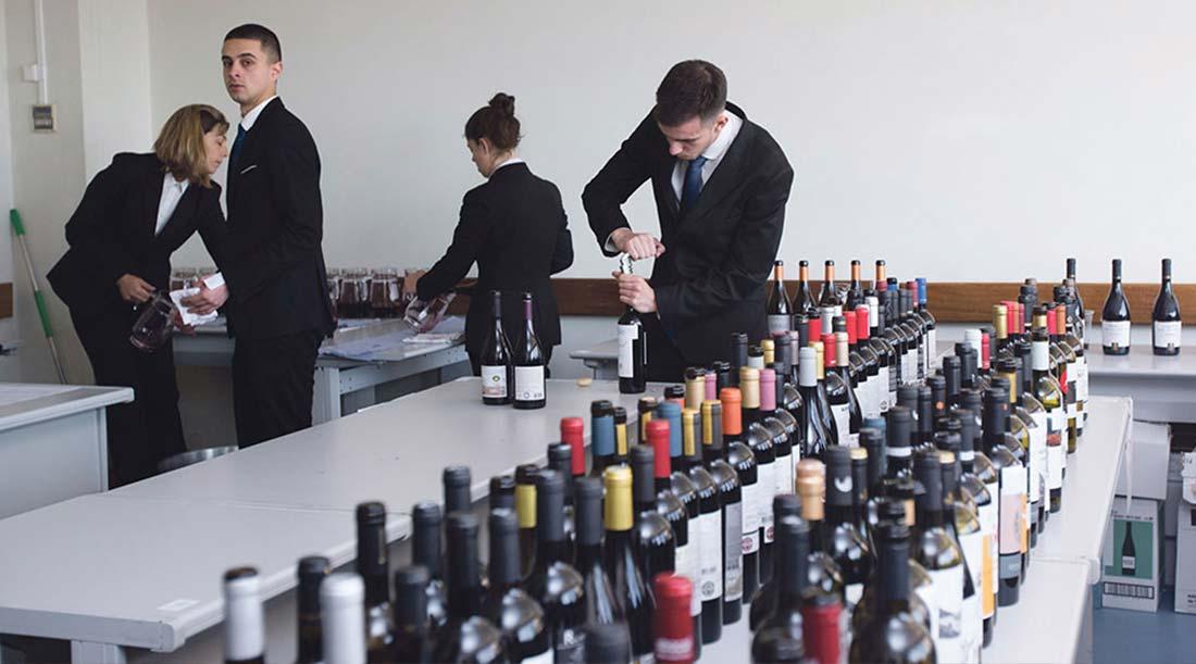 O Setor do Vinho Continua a Atrair Muitos Joven